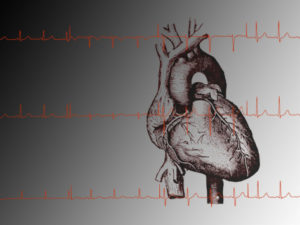 heart-and-readout-of-ekg-ecg-cardio-rhythms